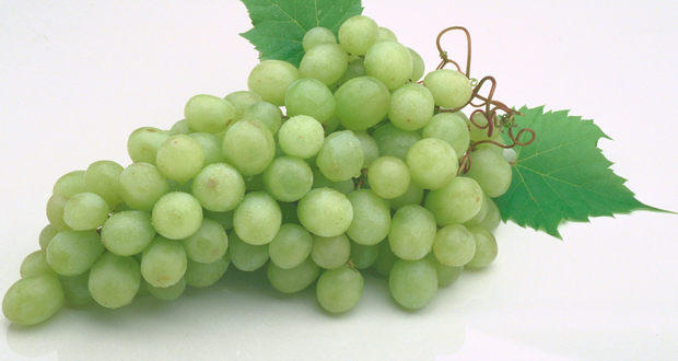 Healthy recipes: Grapes and walnut dip
