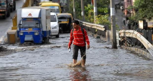 Prevent Leptospirosis, do not walk in puddles of rain water!