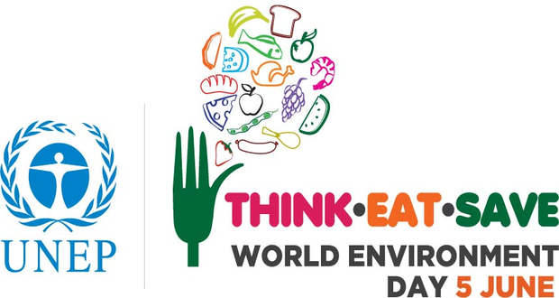 World Environment Day 2013: A third of global food produce doesn't reach people!