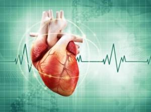 Bio-resorbable Vascular Scaffold - a new technology to treat heart disease