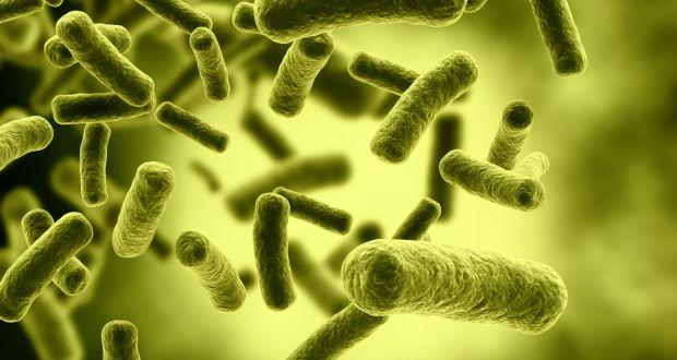 Potential treatment for deadly bacterial infections discovered