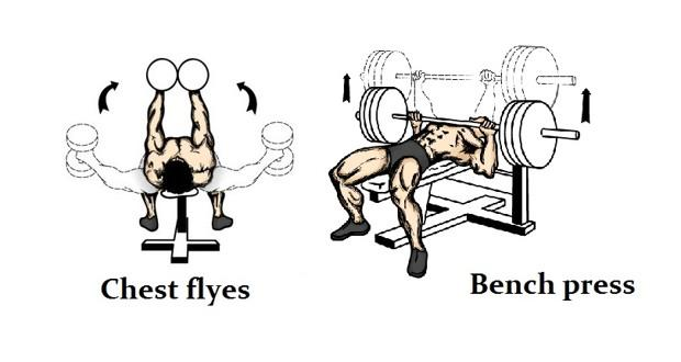 Two Of The More Por Chest Exercises Are Flyes And Bench Presses But Which One Is Better For Your Regime