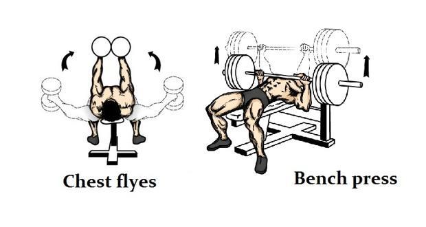 chest vs
