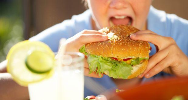 Revealed - how the brain controls hunger