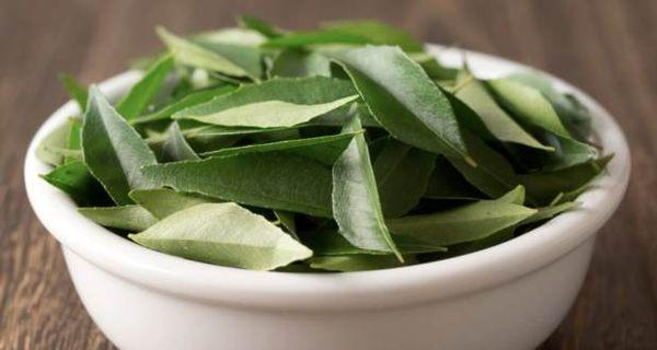 Prevent hair loss with curry leaves or kadi patta