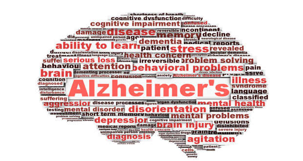 Scientists reverse memory loss in mice with Alzheimer's