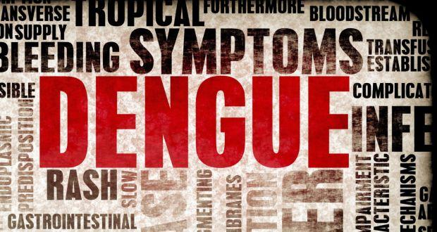 Is there a treatment for dengue on its way?