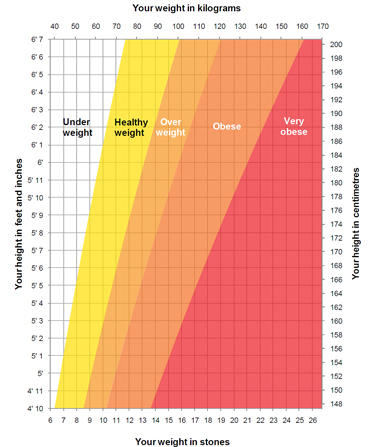 men weight chart