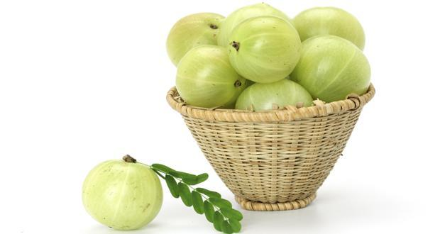 Can amla help control diabetes