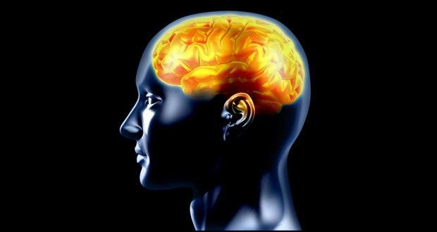 Can 3D brain view help treat Alzheimer's, Parkinson's?