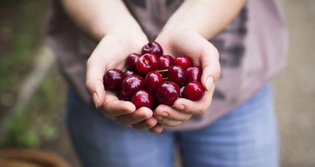 Why is tart cherry juice so good for cyclists?
