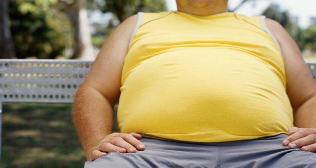 sugar-obese