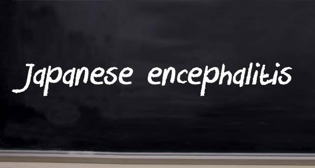 1japanese-encephalitis
