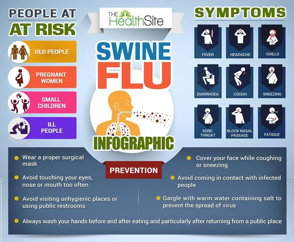 swine flu infographic