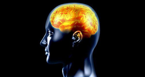 It's dopamine in brain that helps in bonding
