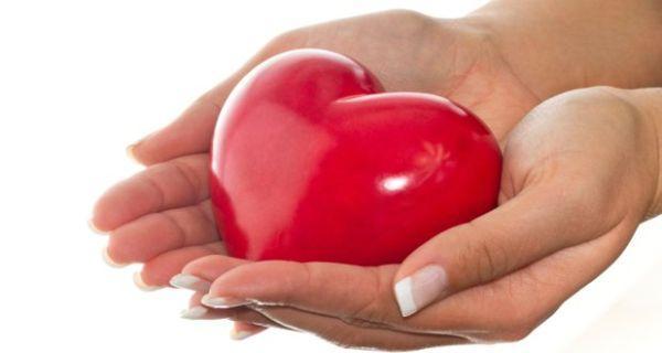 Organ donation: What is brain death?