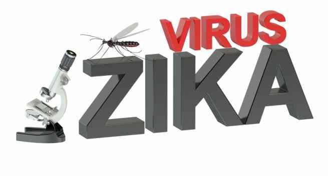 Diseases zika virus THS