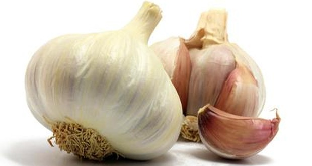 Wp content uploads 2016 04 garlic 3