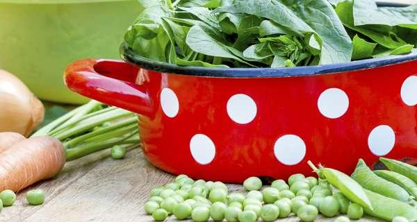 High intake of vegetable protein may protect women from early menopause