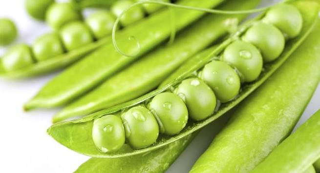 Green peas vegetarian sources of proteins for immunity  lean mass and lean body