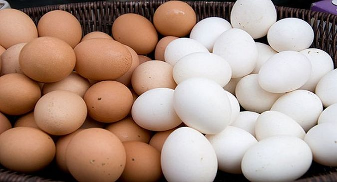 Brown eggs are better than white, eggs increase ...