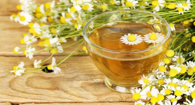 chamomile-tea-drug