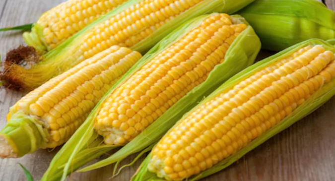 corn-food-pregnancy