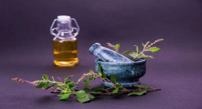 maleria home remedies1