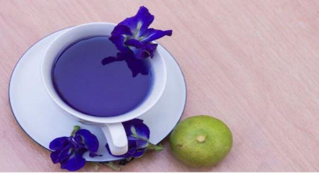 Blue tea health benefits 1