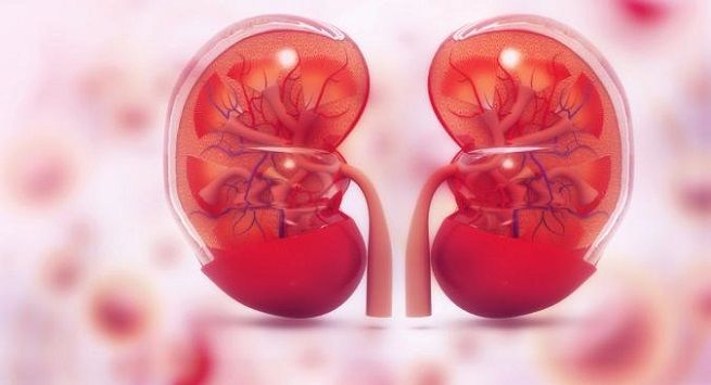 Kidney transplant You might have to be on dialysis for a while after surgery