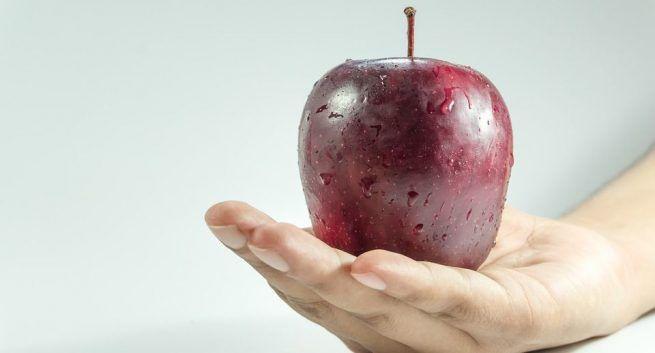 Diet rolls in weight loss