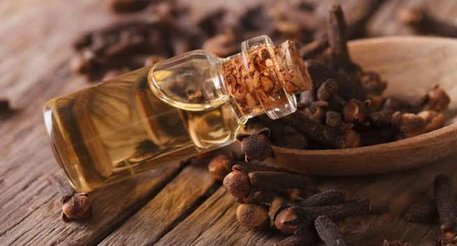 Clove oil for winters