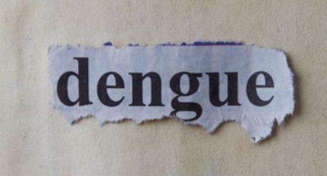 Dengue symptoms in hindi डेंगू बुखार