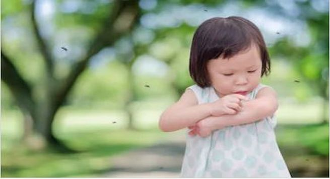 Remedies to cure mosquito bites in baby 1