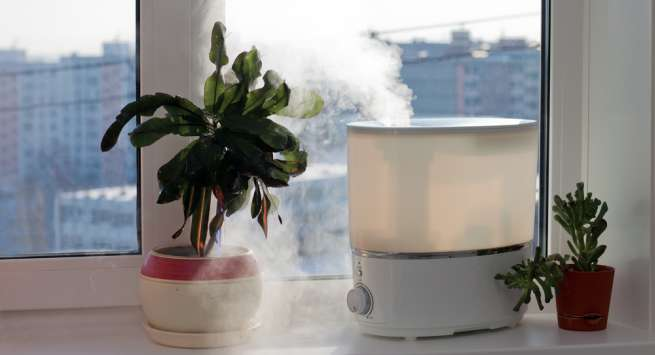 Humidifier eye care tips for winters everyone must know about
