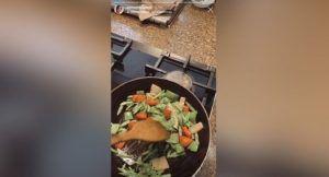 stir-fried tofu