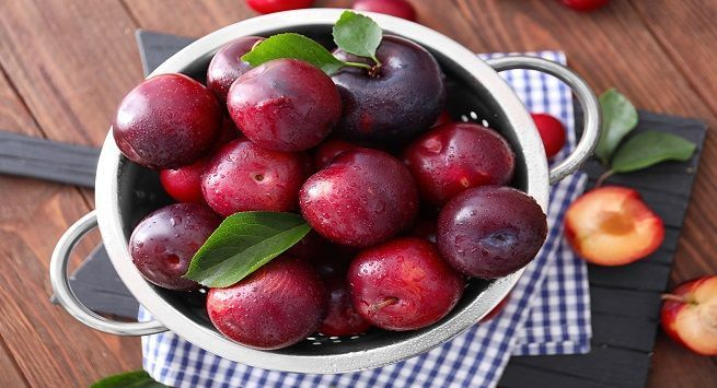 plums-pg