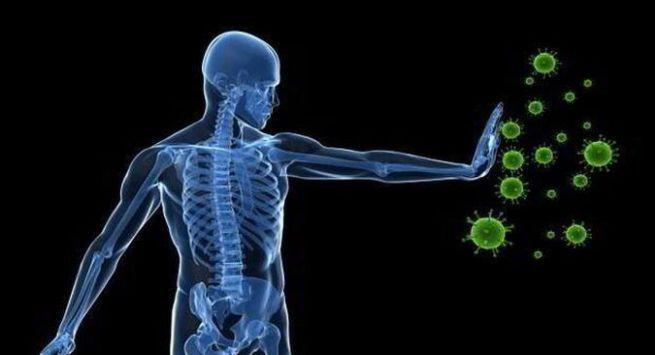 Herbs to boosts immunity in hindi