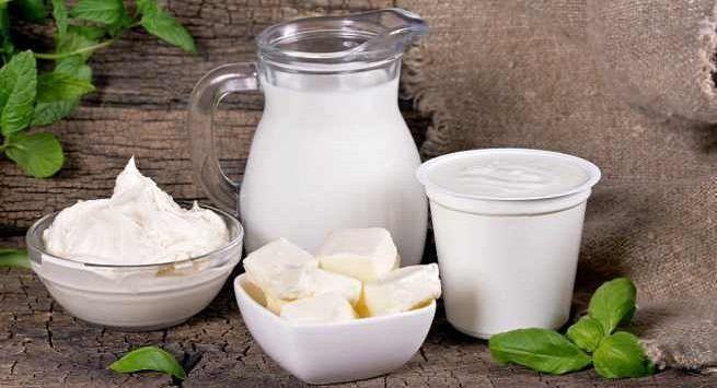 Global dairy alternatives to reach  52 58 billion by 2028